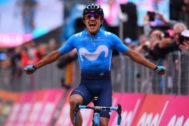 Carapaz celebra la victoria en la etapa 14 del Giro.