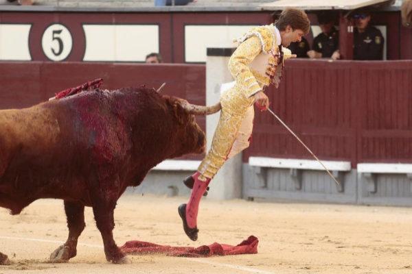 El pitón se hunde en el cuerpo de Juan Leal, este sábado, en Las Ventas.