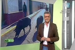 El presentador Modesto Baragán, durante un programa de Andalucía Directo.
