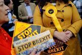 "Simpatizantes del partido Liberal Demócrata con carteles de ""Stop Brexit""."