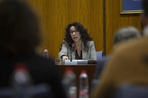 La consejera de Igualdad, Políticas Sociales y Conciliación, Rocío Ruiz, en una comisión parlamentaria.