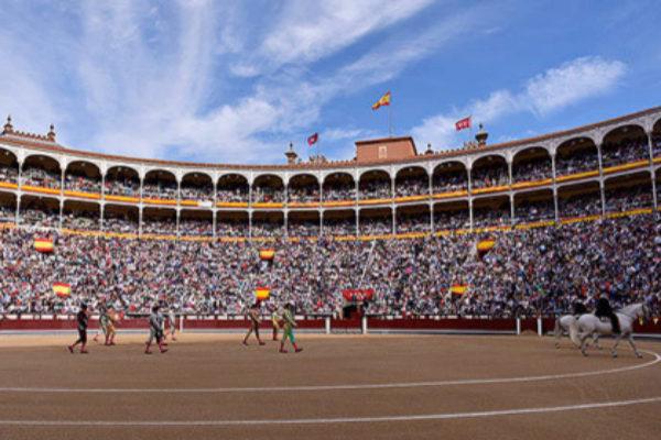 Sigue en directo la Feria de San Isidro