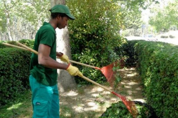 Un alumno realizando un curso de jardinería en Vallecas.