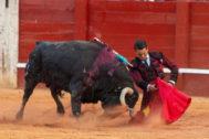 José María Manzanares inicia por bajo la faena al sexto toro de Jandilla, premiado con la vuelta al ruedo.