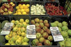 Puesto de frutas y verduras en la Feria de Biocultura en la Casa de Campo.