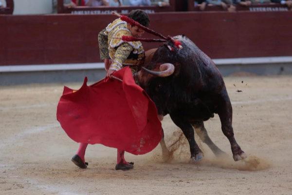 Embraguetado derechazo de Tomás Campos al sexto toro de Las Ramblas, de 610 kilos.