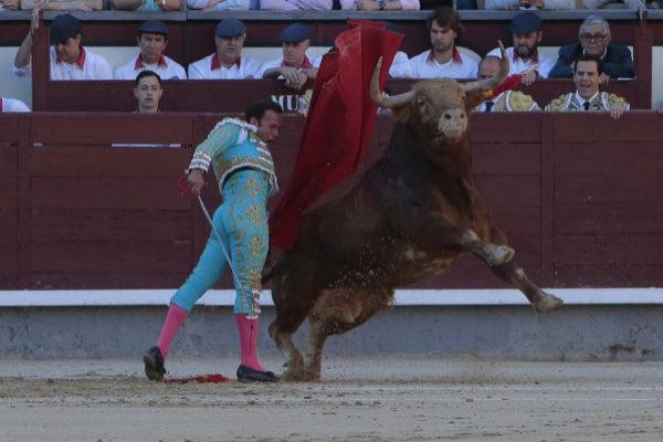 Pase de pecho de Antonio Ferrera al encastado primer toro de la tarde en los terrenos de chiqueros, este viernes, en la Monumental de las Ventas.