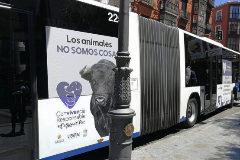 Campaña publicitaria animalista en los autobuses de Valladolid