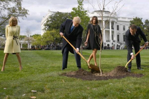 El presidente de EEUU, Donald Trump, y su homólogo francés, Emmanuel Macron, plantan el árbol 'de la amistad' en Washington, en 2018.