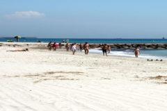 Vista de la playa de Almassora.