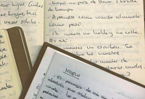 Los diarios de la escritora Nuria Labari.