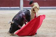 De Morante a Aguado, un abánico de atractivos en el festival de Aranda como homenaje a los cirujanos