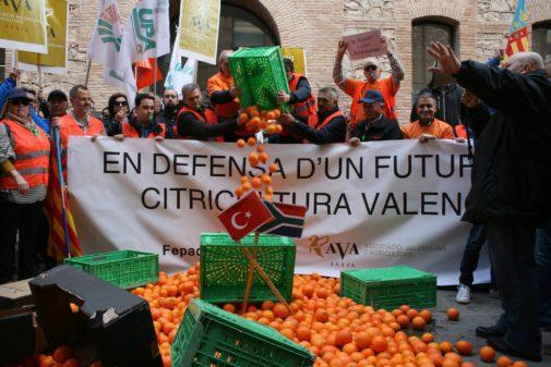 """Resultado de imagen de contra la importación de naranja y mandarina extranjera"""""""