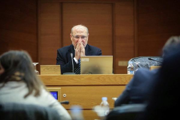 El vicepresidente ejecutivo de la AVI, Andrés García Reche, en las Cortes.