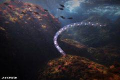 Cada punto luminoso es una salpa juvenil. Navegan agregadas formando lo que se conoce como 'cinturón de Venus'.-