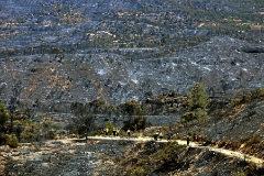 Incendios más agresivos por la despoblación de la España vaciada