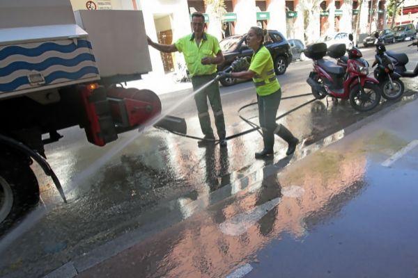 Empleados de la compañía municipal Emaya trabajando en una calle del centro de Palma.