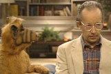 Max Wright, en una escena de la serie 'Alf'.