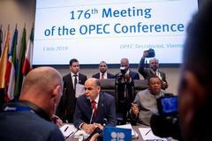 Imagen de la reunión de la OPEP celebrada hoy en Viena.