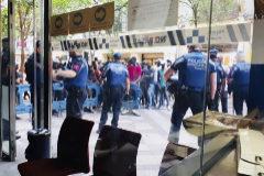 La lucha 'antimanteros' cayó un 21% en la legislatura de Carmena