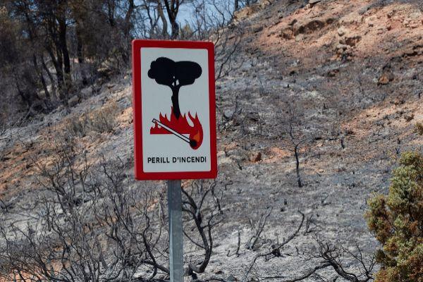 Terreno calcinado el sábado tras el paso del incendio forestal de Tarragona