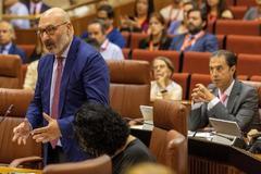 El portavoz de Vox en el Parlamento andaluz, Alejandro Hernández, durante su intervención.