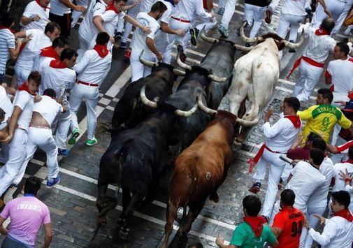 Las ganaderías que protagonizan San Fermín 2019