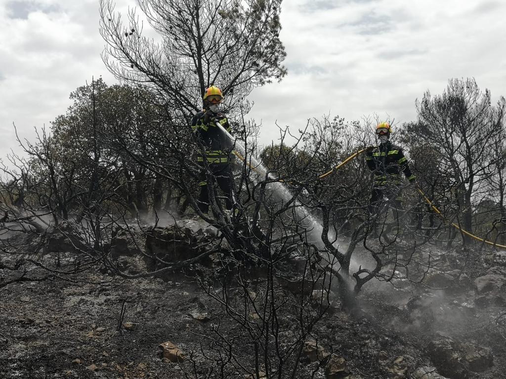 Los bomberos del Consorcio Provincial trabajando en la zona.