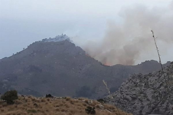 Incendio forestal en Escorca.