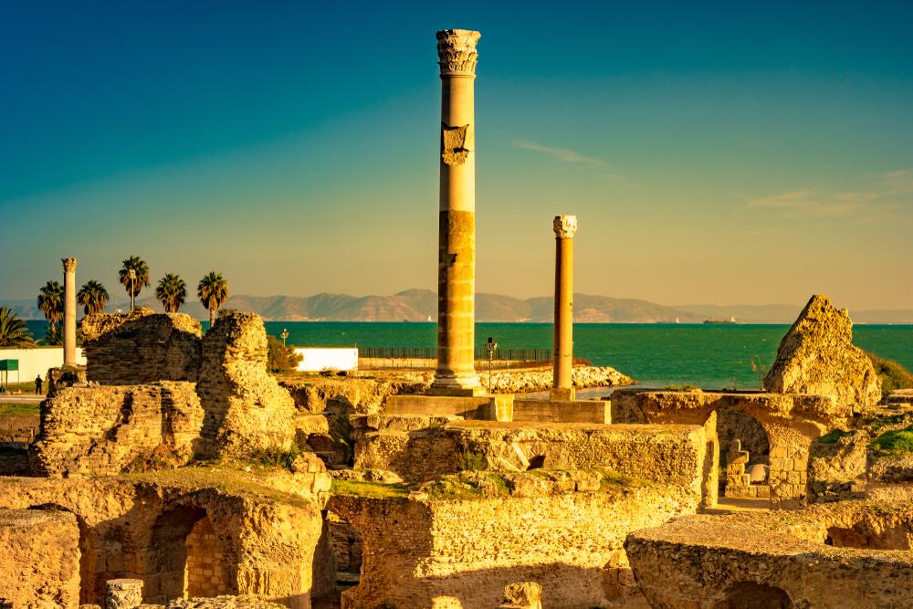 Cartago debe ser destruida. Esta famosa frase, atribuida a Catón el...