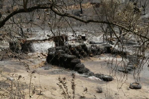 Una de la zonas afectadas por el incendio.