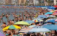 Cientos de bañistas disfrutan de una jornada de playa en Benidorm (Alicante).