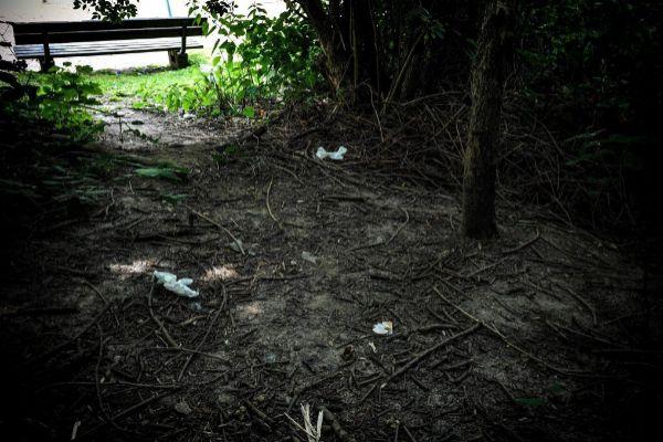 Un matorral cerca de la última escena del crimen, donde una joven fue violada en Muelheim, Alemania.