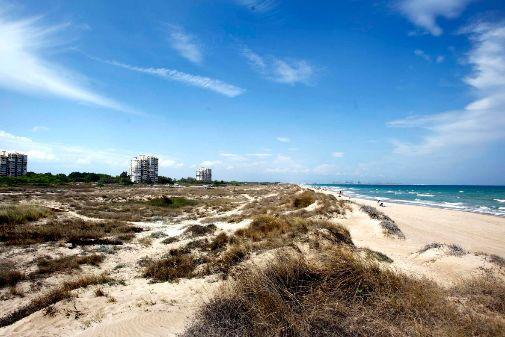 La playa de El Saler (Valencia) desde las dunas protegidas.
