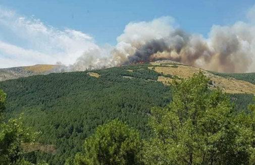 El fuego de Sotillo de Adrada (Ávila) alcanza la Reserva Natural del Valle de Iruelas