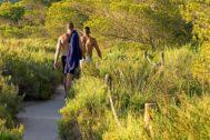 El furor por el sexo al aire libre pone en peligro un Parque Natural en Ibiza