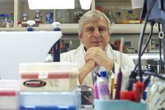 López Barneo, en su laboratorio de Sevilla.