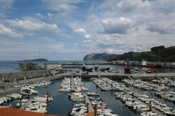El puerto deportivo de Bermeo (Vizcaya) donde se ha producido el...