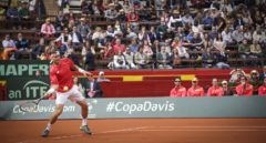 David Ferrer durante la Copa Davis del pasado año.
