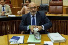 El portavoz de Vox, Alejandro Hernández, en el Parlamento andaluz durante la primera jornada del debate final de los presupuestos para 2019.