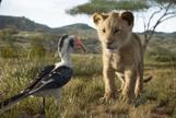 El rey león: cuanto mejor... peor