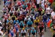 El pelotón, durante la etapa 12 del Tour de Francia.