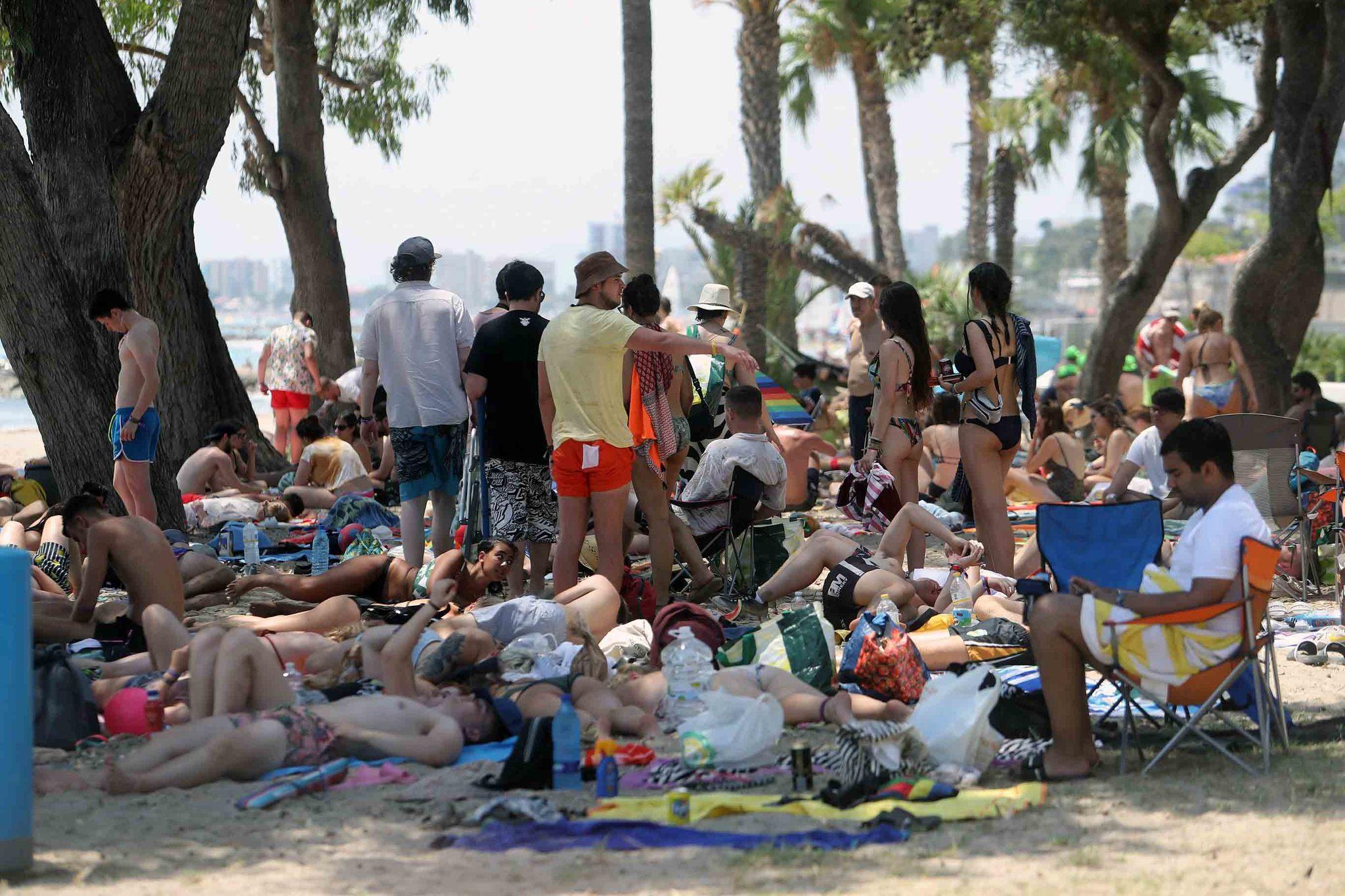 Las playas de Benicàssim, garantía FIB