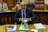 El portavoz de Vox, Alejandro Hernández, en el Parlamento andaluz.