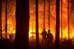 20 heridos en cuatro incendios en el centro del país