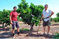David y Valero Esteban, en uno de sus huertos.