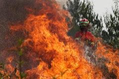 """FOTODELDIA-EPA1279. MACAO (<HIT>PORTUGAL</HIT>).- Un bombero trata de extinguir las llamas durante un incendio en Maçao, <HIT>Portugal</HIT>, este domingo. Los bomberos consiguieron dominar el 85 % del área del incendio que se mantiene activo en Vila de Rei, en el centro de <HIT>Portugal</HIT>, aunque las altas temperaturas y el viento hacen prever una tarde de """"intenso trabajo""""."""