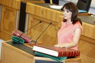 Julia Parra (Cs) en el juramento del cargo.