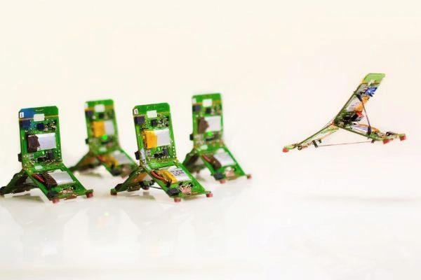 Estos robots piensan y se comportan como hormigas