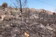 Un rayo pudo causar el incendio de El Berrueco